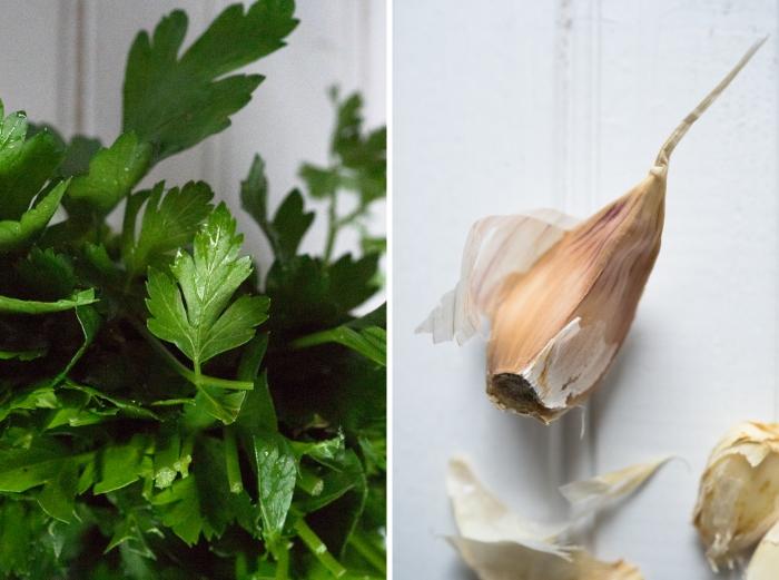 garlic dyptic