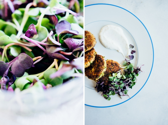 Quinoa Cauliflower and Kale Cakes | TENDING the TABLE